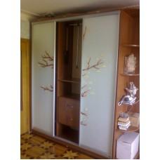 Шкаф-купе заснеженные ветки