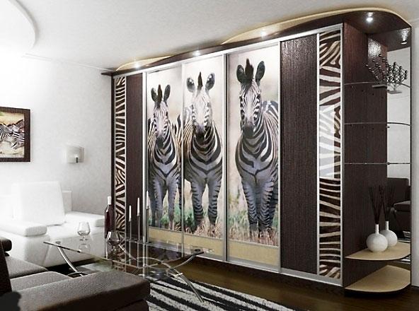 Шкаф-купе зебры